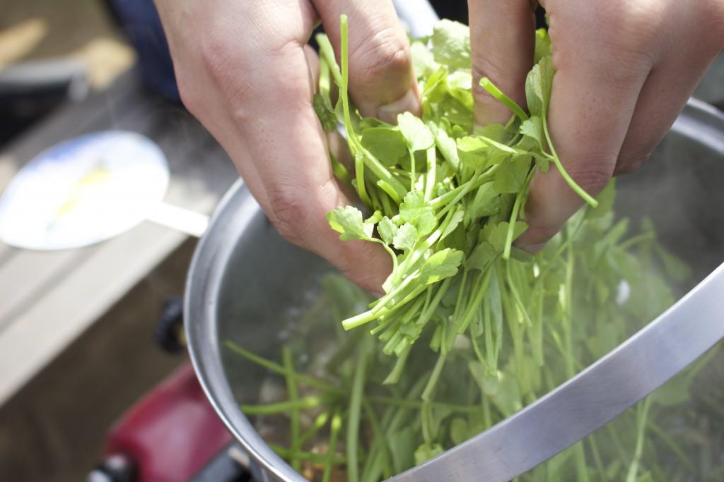 春の野菜、セリをたっぷりと