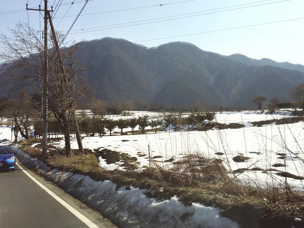 雪が残る道程