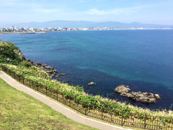 函館山から函館湾を一望。
