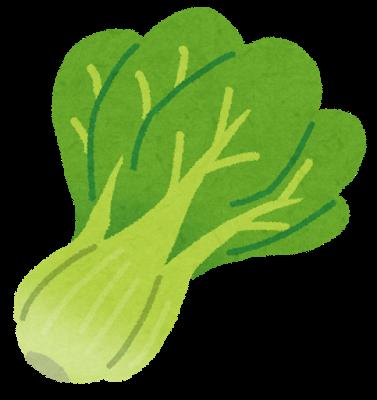 ビタミンAや鉄分、カルシウムが豊富な小松菜。 ((c)みふねたかし いらすとや