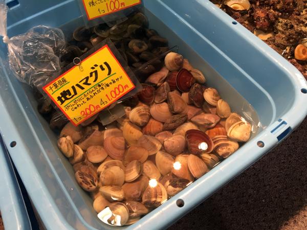 千葉県産ハマグリ。