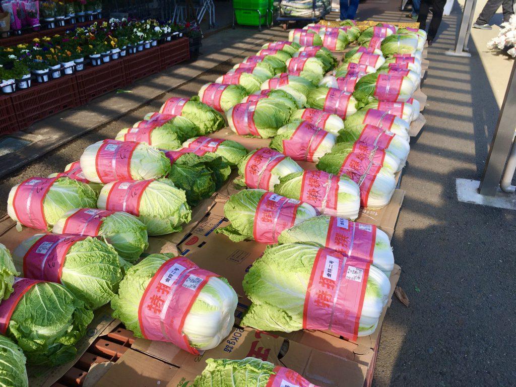 白菜が店頭に並ぶと、冬って感じがしますね。